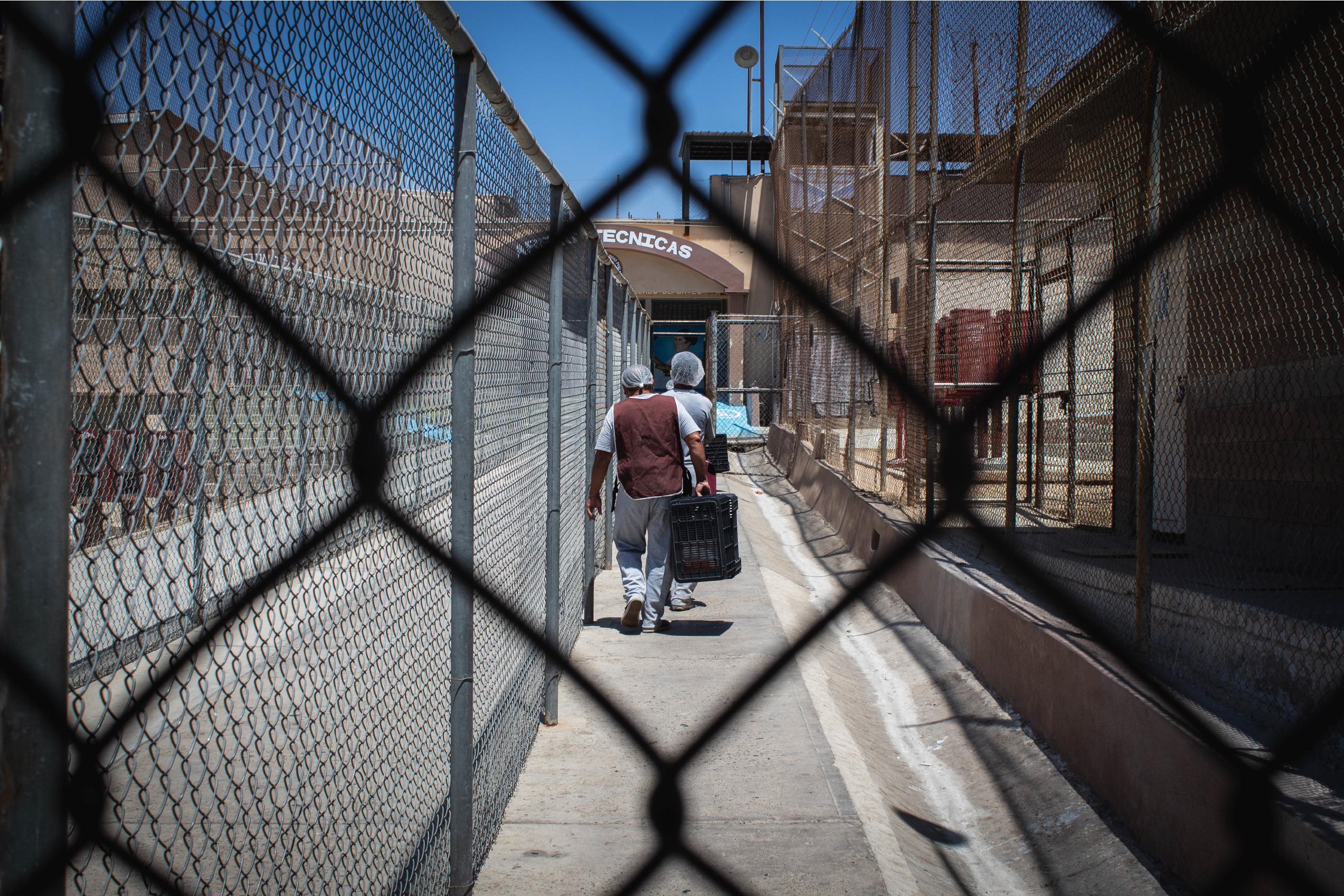 Curso en Hidalgo: Los beneficios de libertad en la Ley Nacional de Ejecución Penal