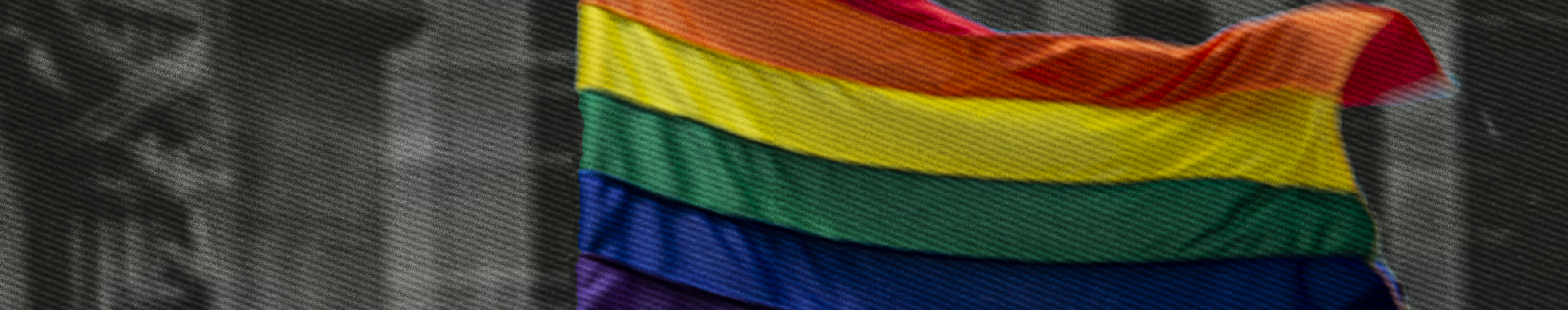 Curso «El acceso a la justicia para las personas pertenecientes a la población LGBTTTI»